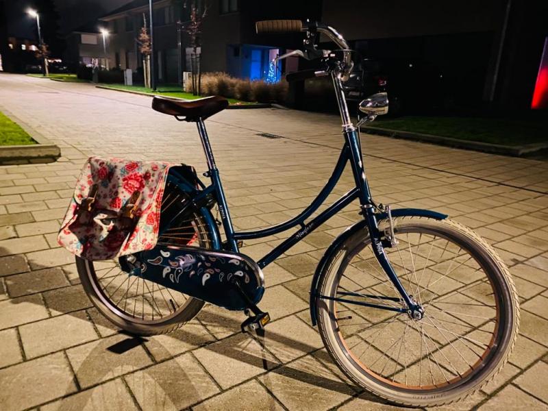 Alpina meisjes fiets donkerblauw
