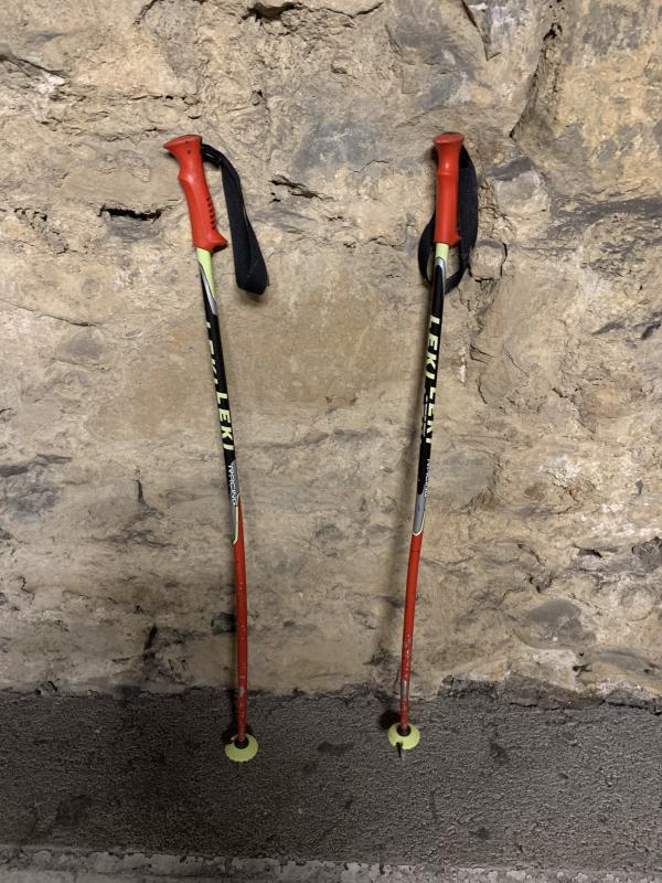 Bastones esqui