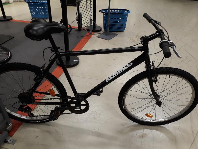 Bicicleta polivalenta